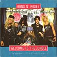Guns N' Roses                                                                                   - Welcome To The Jungle Mp3