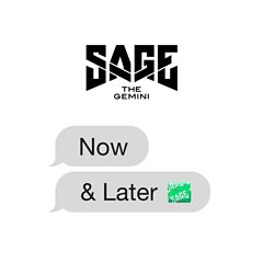 Sage the Gemini                                                                                   - Now and Later Mp3